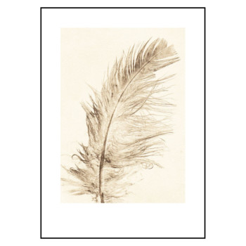 Feather gold 50x70